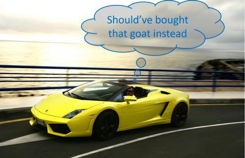 goat regret