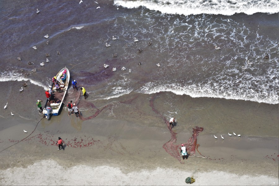 Cartagena fishermen
