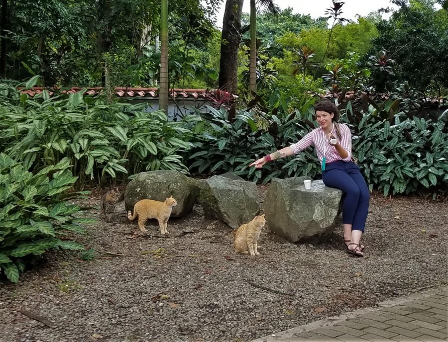Medellin botanic cats