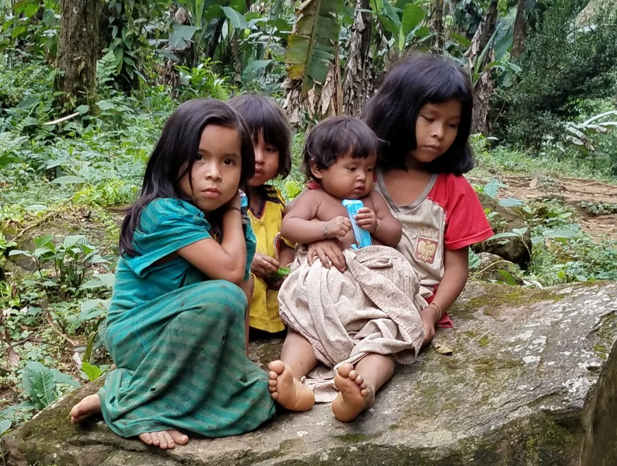 Sierra Nevada Tayrona kids
